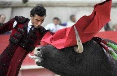 matador.afp_