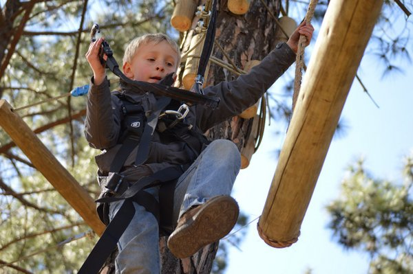 rope-course-4898114_1280